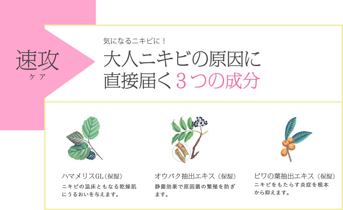速攻、気になるニキビに!大人ニキビの原因に直接届く3つの成分。ハマメリスGL(保湿)ニキビの温床ともなる乾燥肌にうるおいを与えます。/オウバク抽出エキス(保湿)静菌効果で原因菌の繁殖を防ぎます。/ビワの葉抽出エキス(保湿)ニキビをもたらす炎症を根本から抑えます。