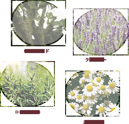 原料 - ローズウッド/ラベンダー/ローズマリー/カモミール