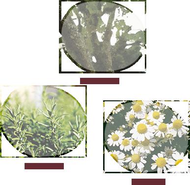原料 - ローズウッド/ローズマリー/カモミール